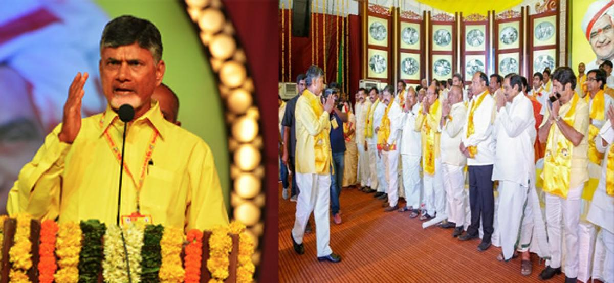 Chandrababu Naidu re-elected TDP central committee chief