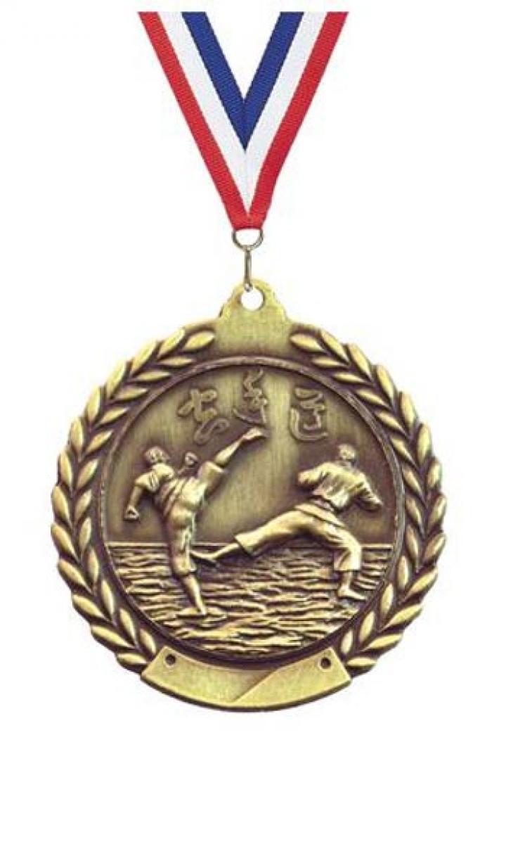 Alphores student wins gold medal in karate