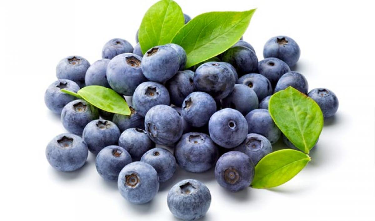 Eat blueberries to fight age, memory loss