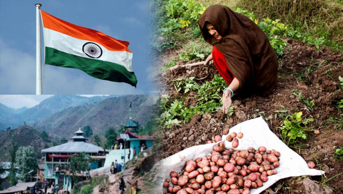Weather woes make life miserable for J-K farmers