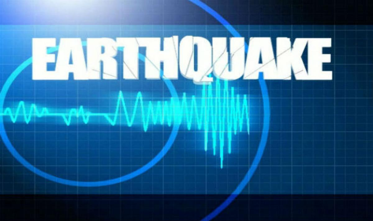 Strong 6.3 Earthquake Strikes Off Pakistan Coast: US Monitors