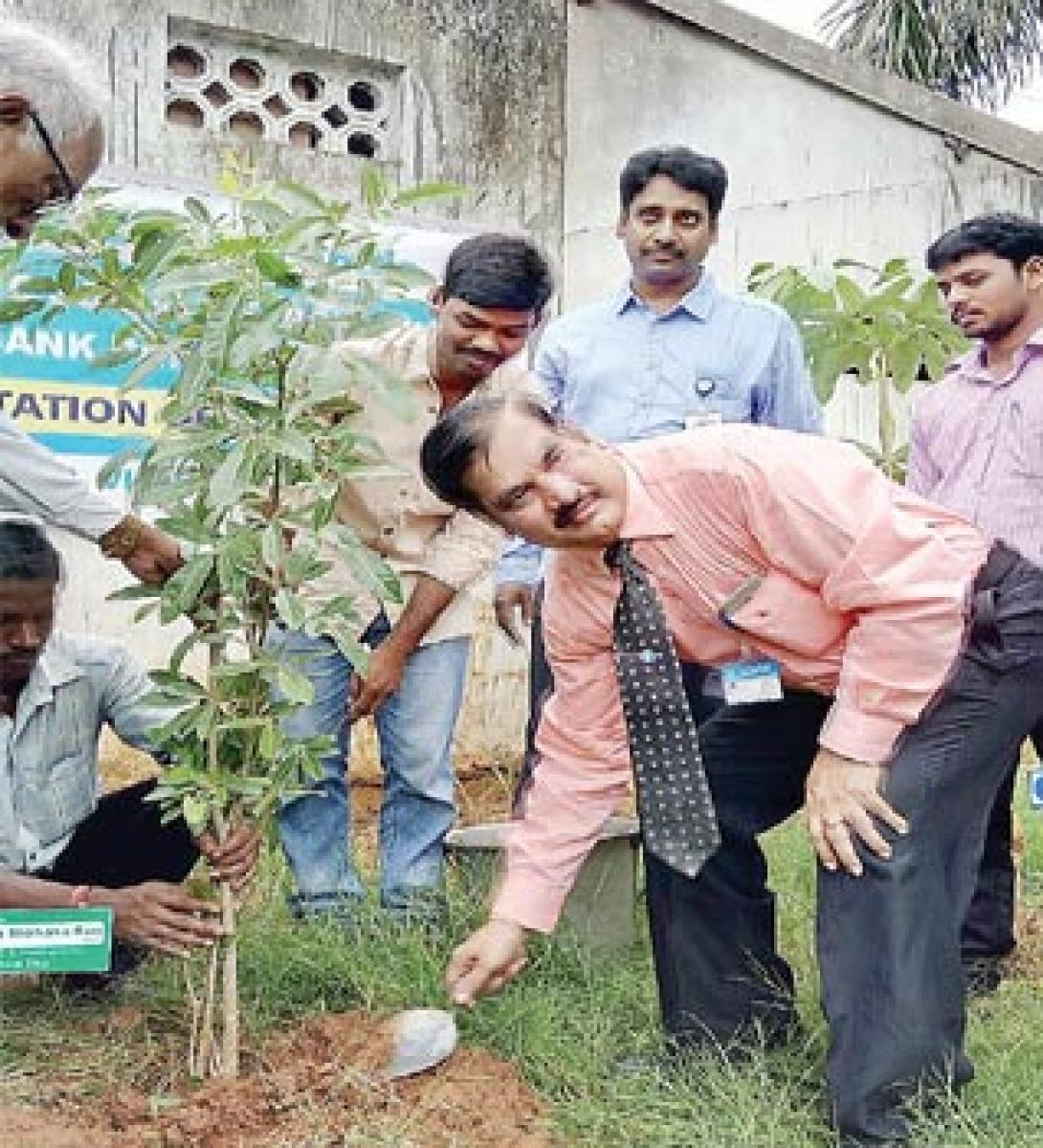 SBI staff plant saplings to mark Formation Day