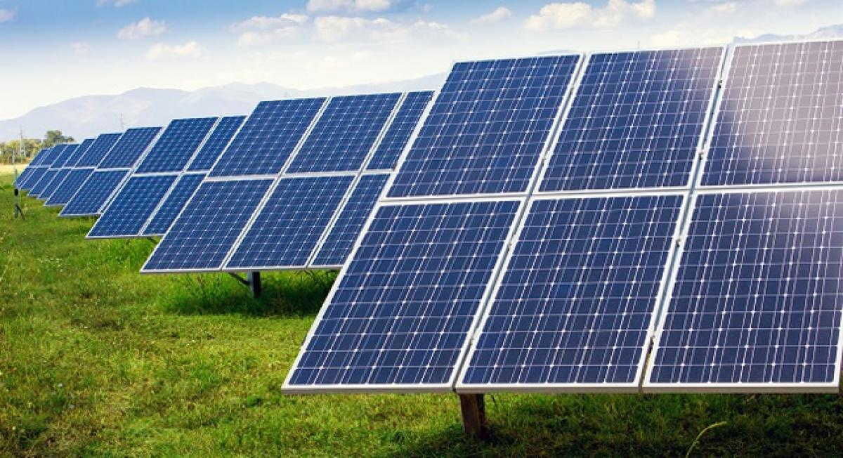Plant inspired solar cells to revolutionise energy storage
