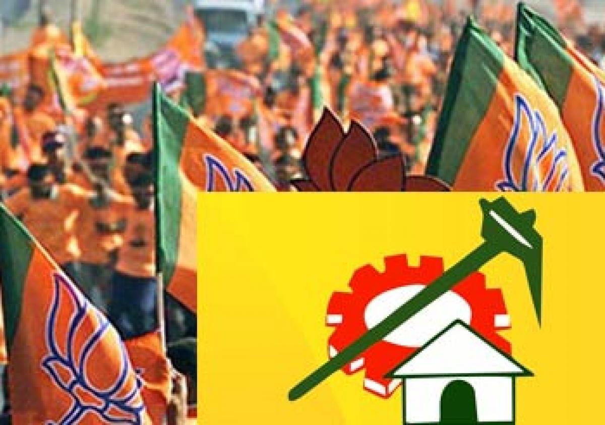 Status issue strains BJP–TDP ties
