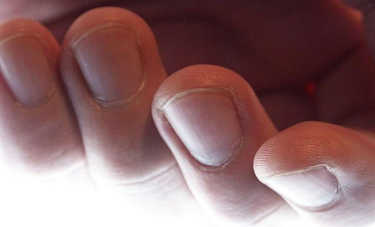 Watch: Man chews off fingertips, eats them to avoid being fingerprinted