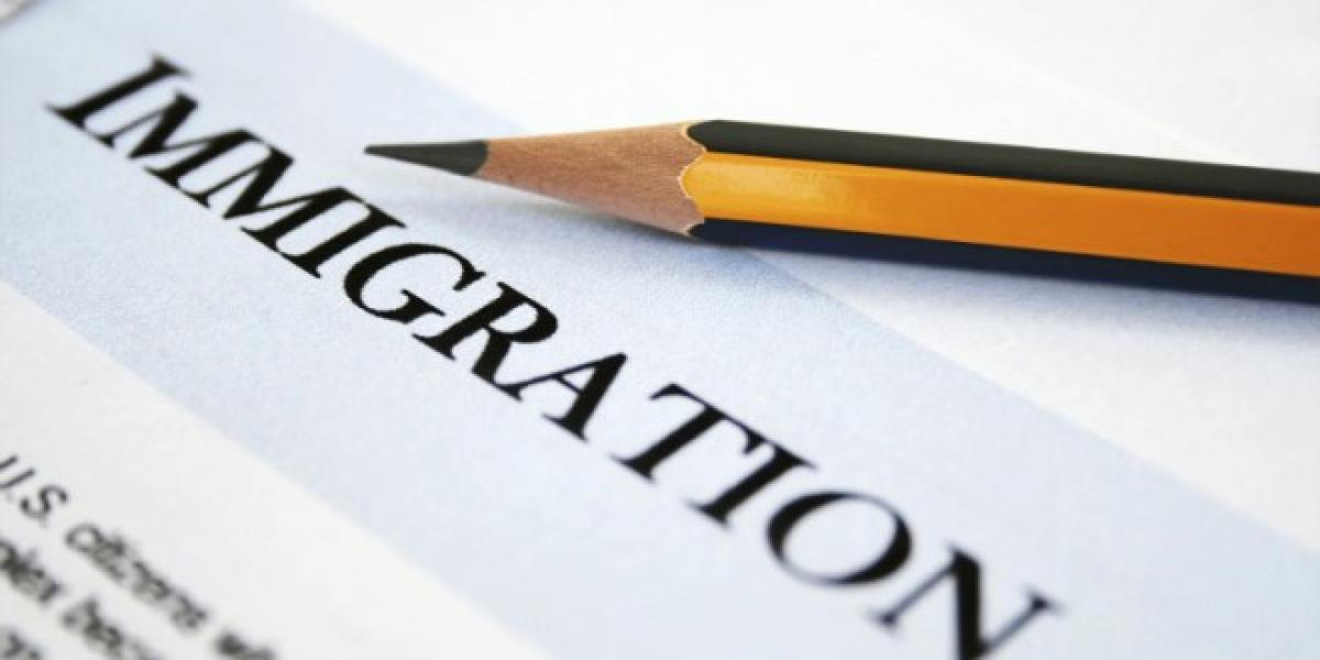 No link between immigration, increased crime in US: study