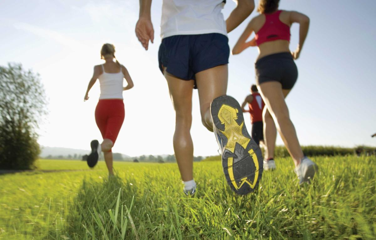 High physical activity lowers heart failure risk