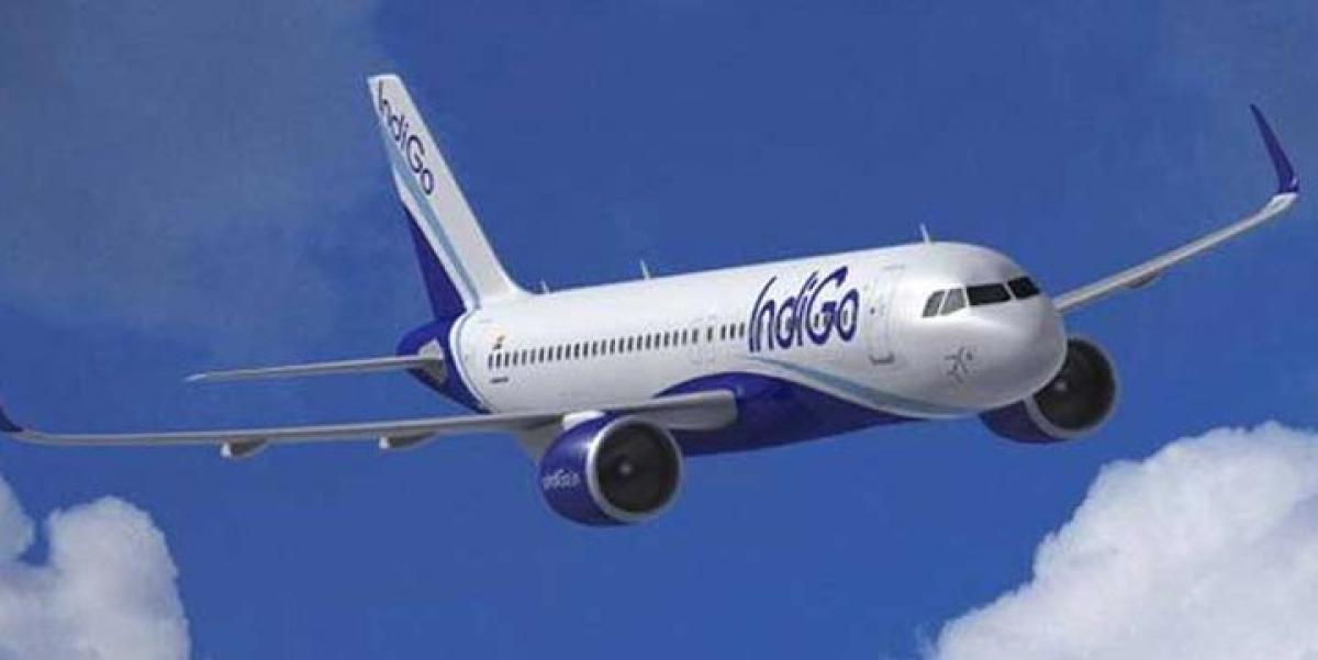 InterGlobe Aviation IPO opens today