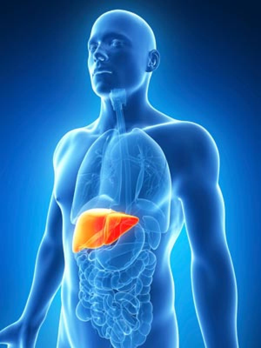 SRL Diagnostics introduces technique to diagnose alcoholic liver