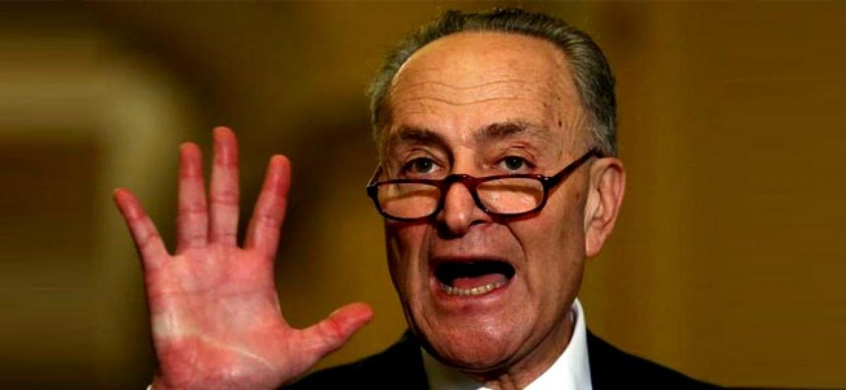 Democratic leader Schumer emerges as Trumps newest punching bag