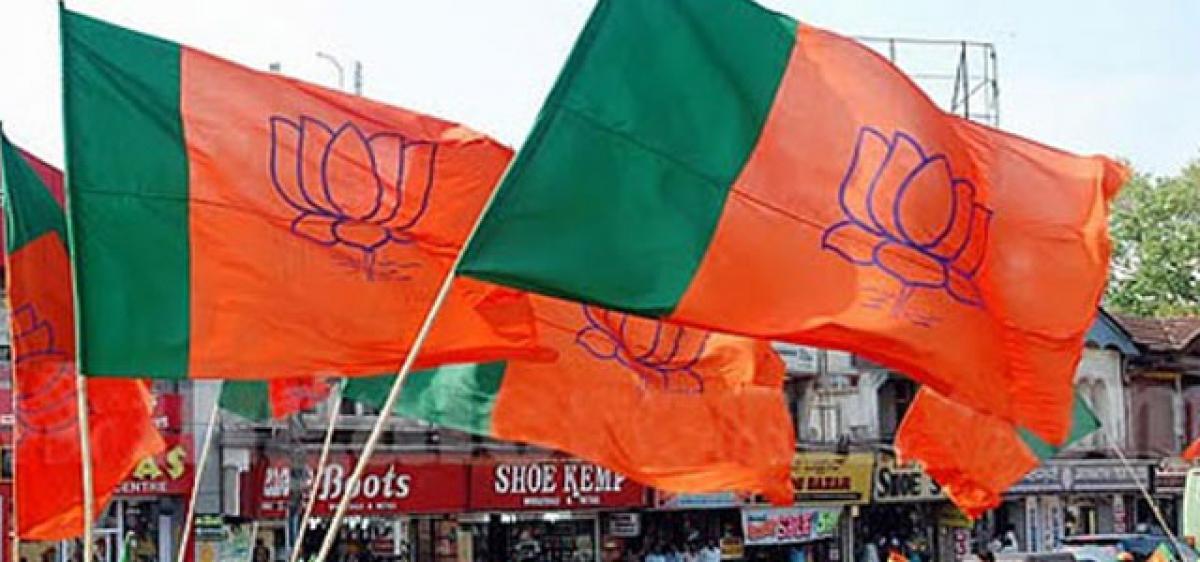 BJP to strengthen base in Telangana, Andhra