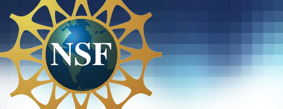Indian-American computer scientist clinches NSF's CAREER award