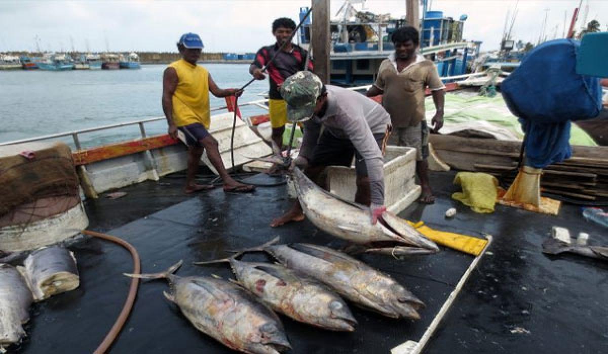 Fishermen societies in troubled waters