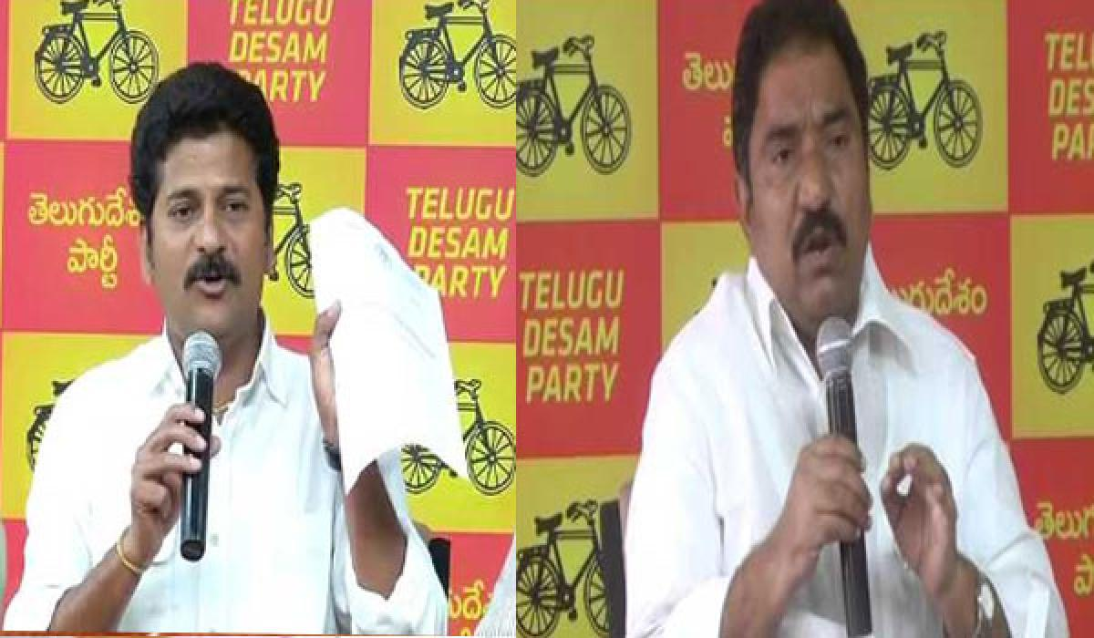 TDP MLAs protest outside House : detained