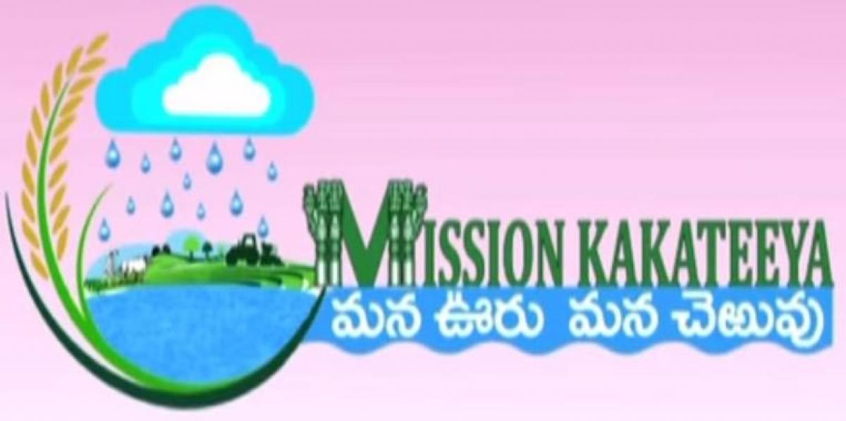 Take special care on Mission Kakatiya works, officials told