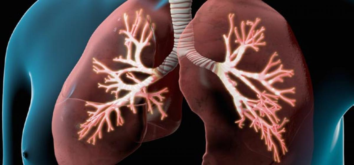 How COPD causes lungs to lose their ability to heal