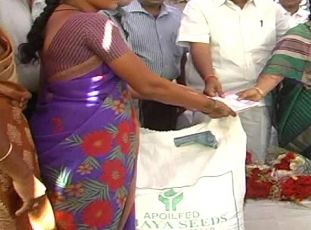 Groundnut seed distribution begins