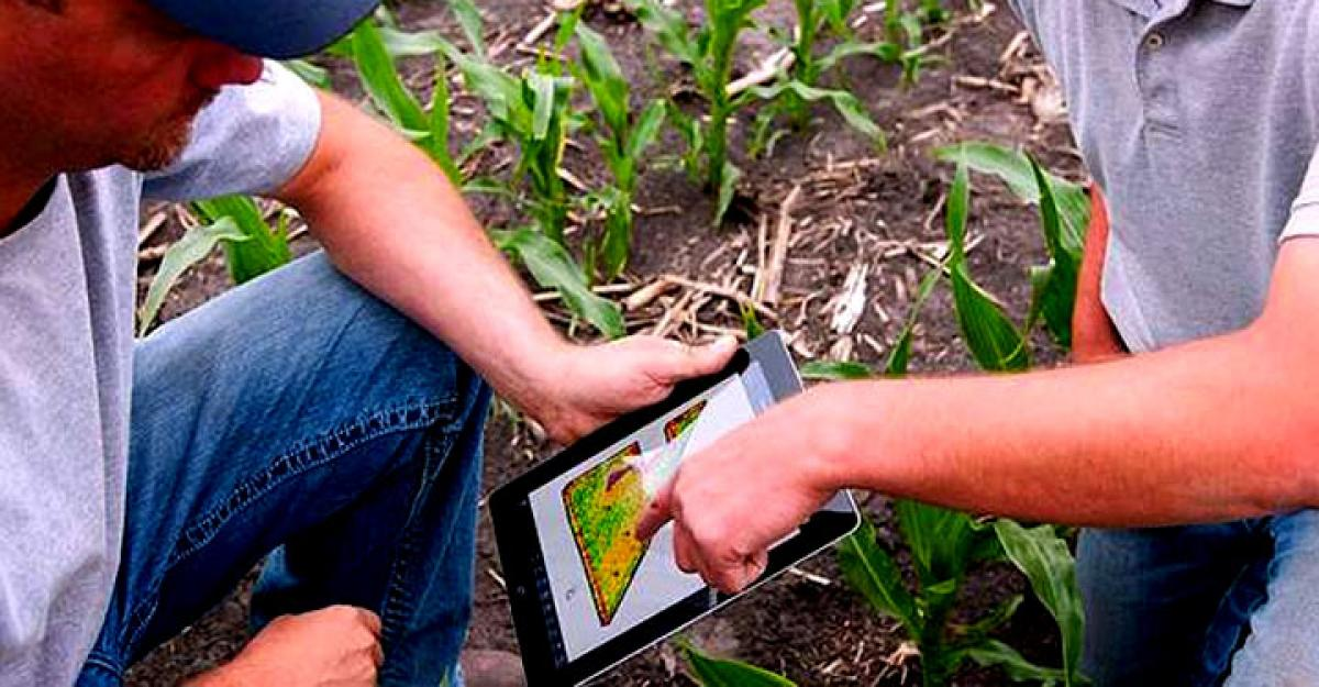 US farmers can use smartphone to track agricultural water use