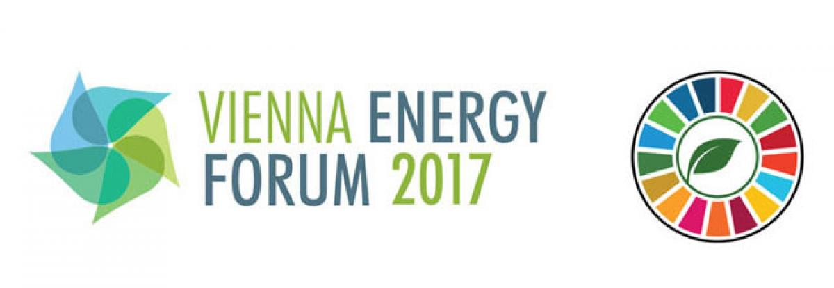 What is Vienna Energy Forum 2017