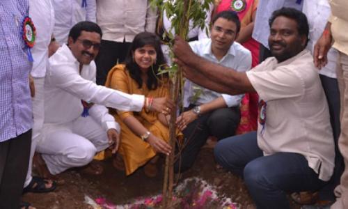 Make tree planting a habit: Sub-Collector