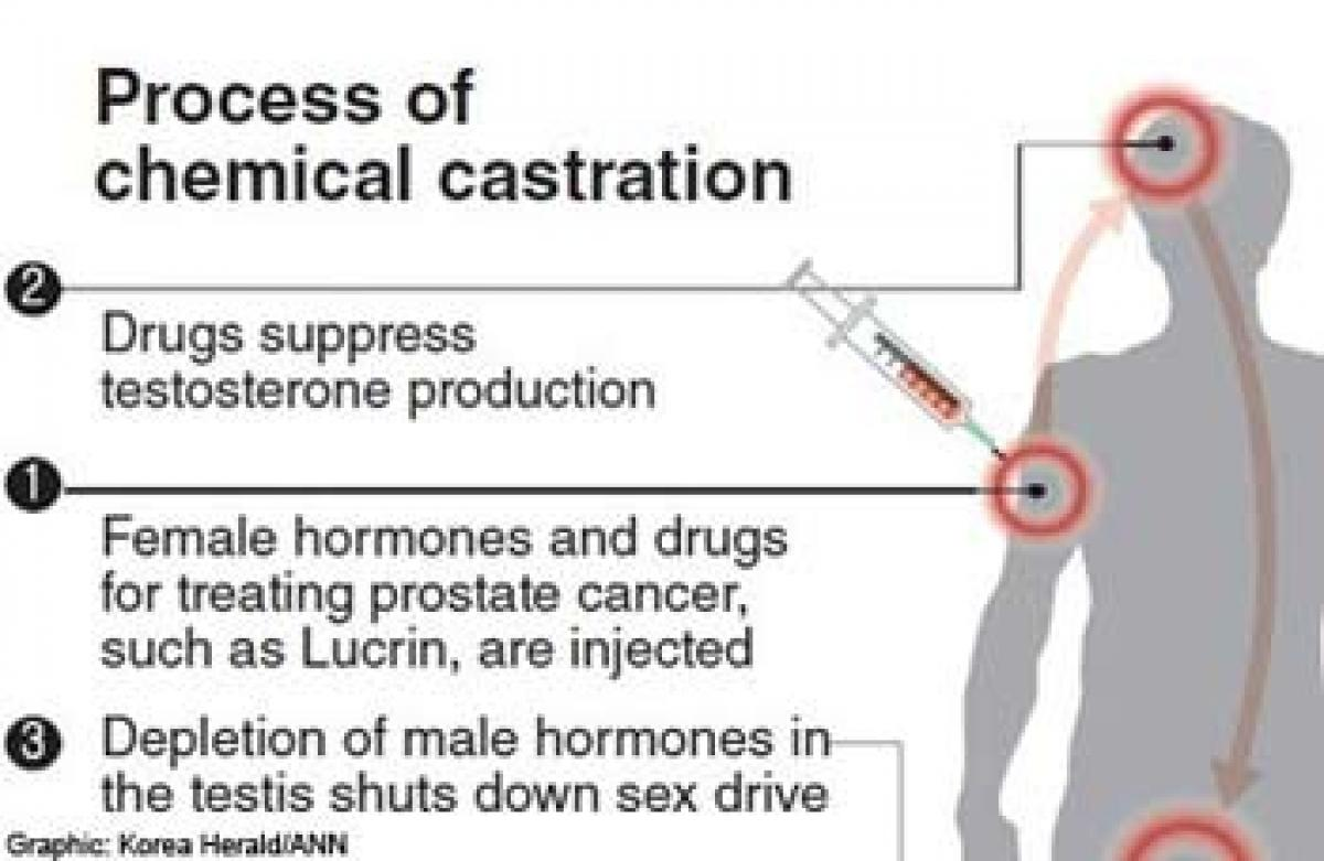 what is a chemical castration