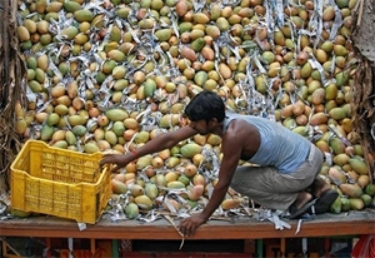 How vitamin C can be retained in dried mangoes