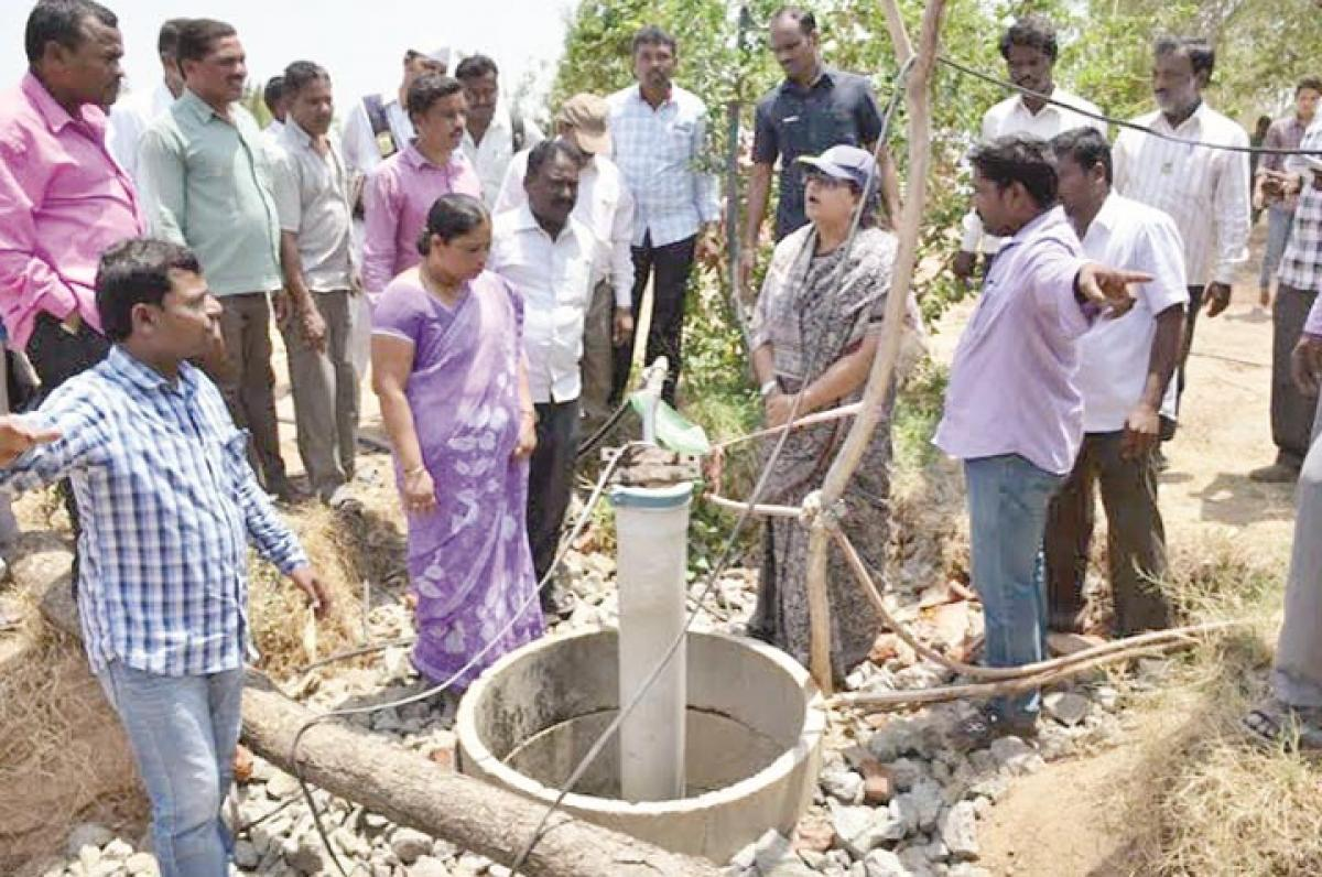 Collector Rana inspects MGNREGS works