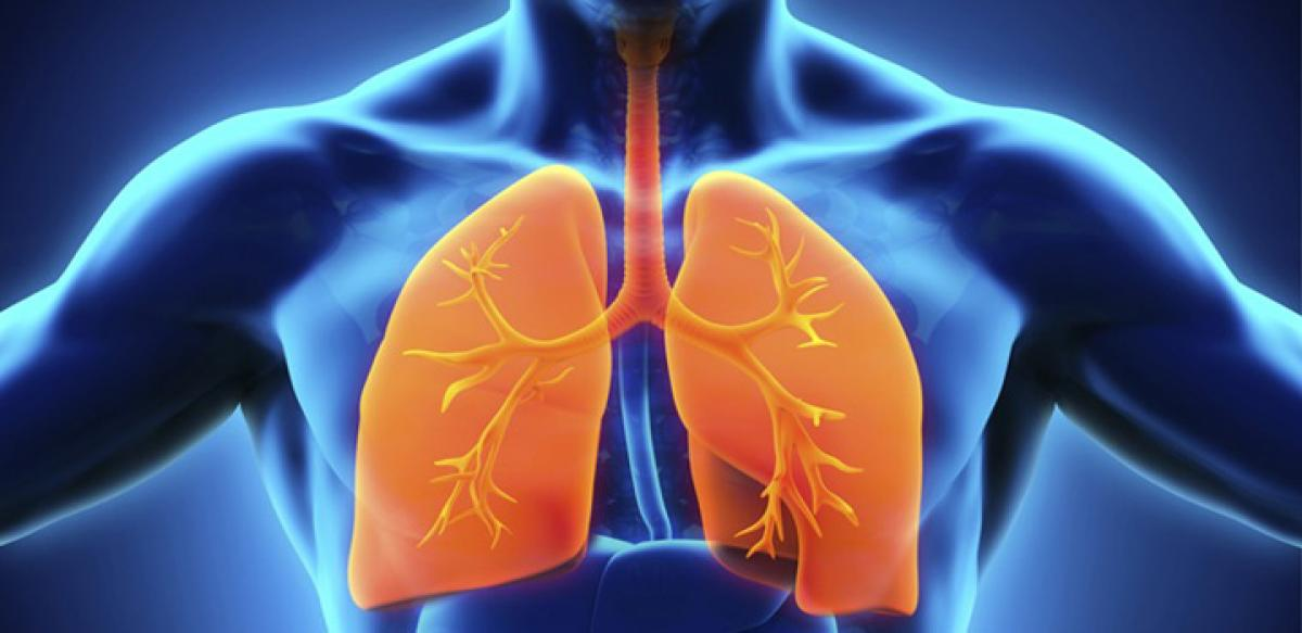 How fast are your lungs ageing?