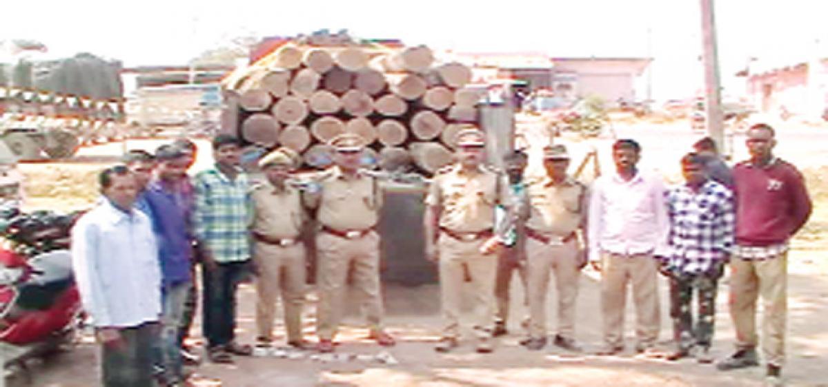 Timber worth `5 lakh seized