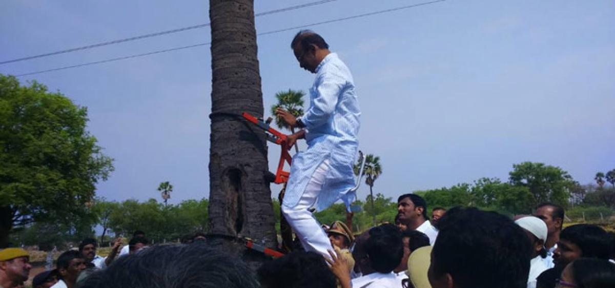 Narsaiah launches tree climbing machine