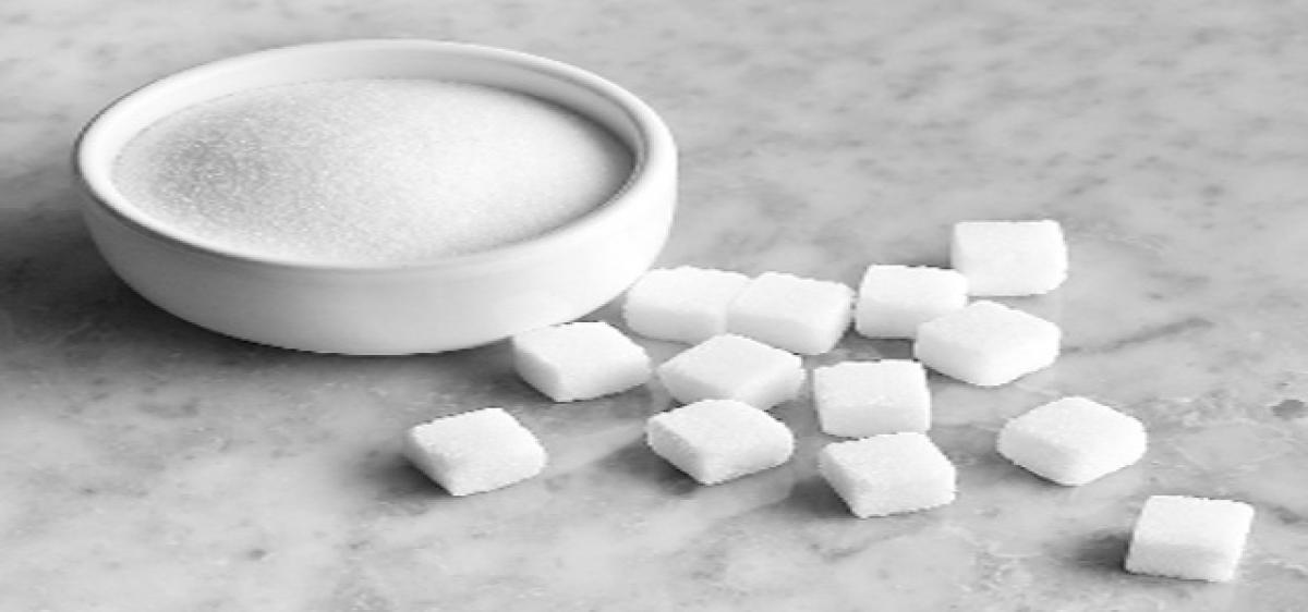 Human brain may help generate fructose