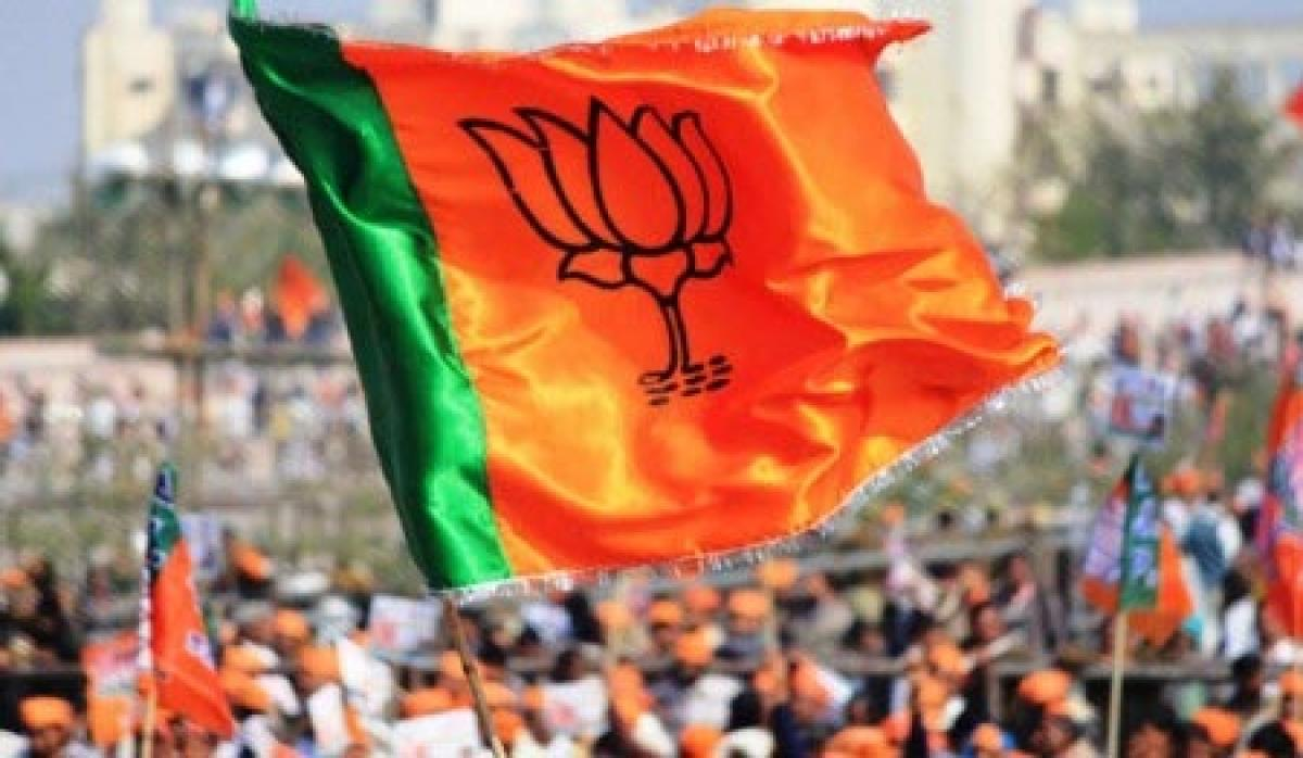 BJP's formation day celebrations held