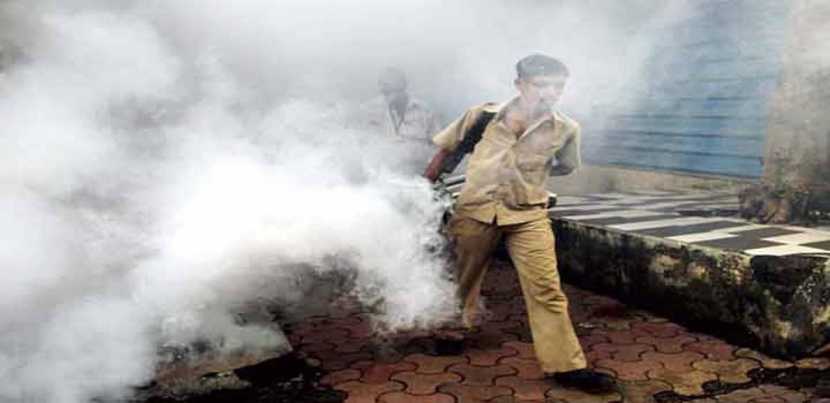 Operation launched to curb mosquito menace