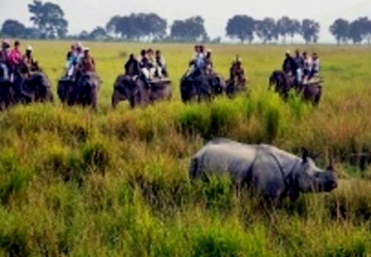 Two poachers gunned down in Kaziranga
