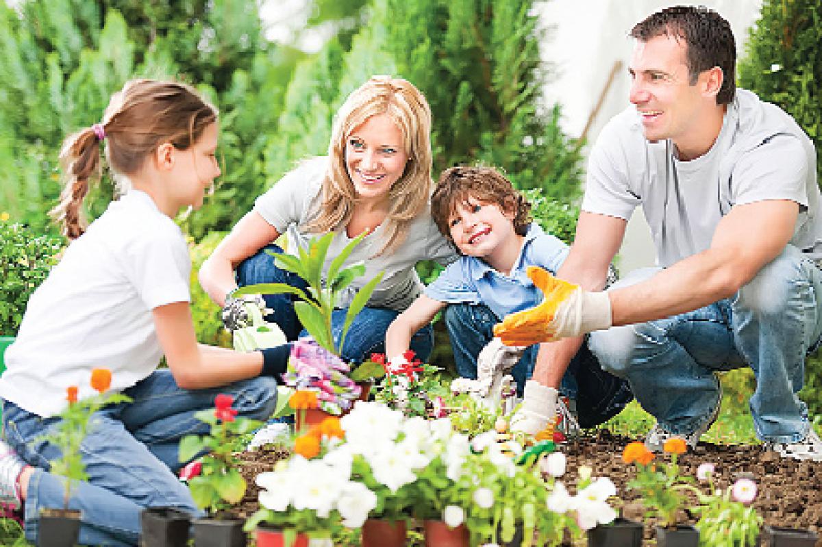 Gardening Programme Mumbai varsity