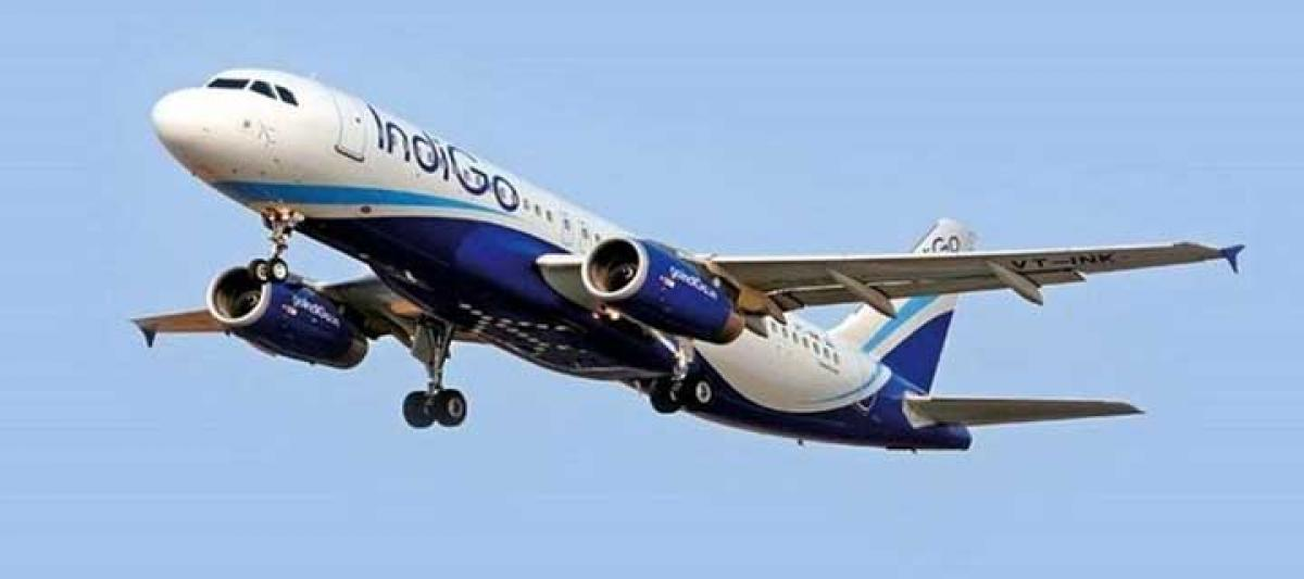 IndiGo eyes up to $510 million in Indias biggest IPO in three years