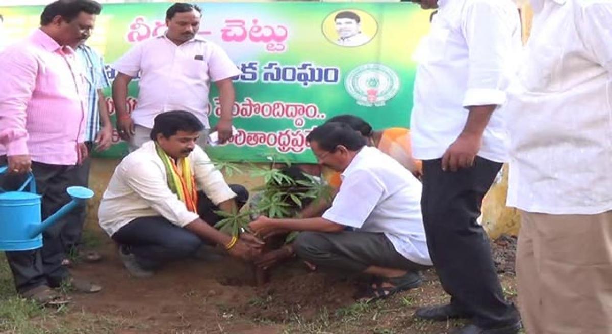 Efforts on to make Tanuku green: MLA