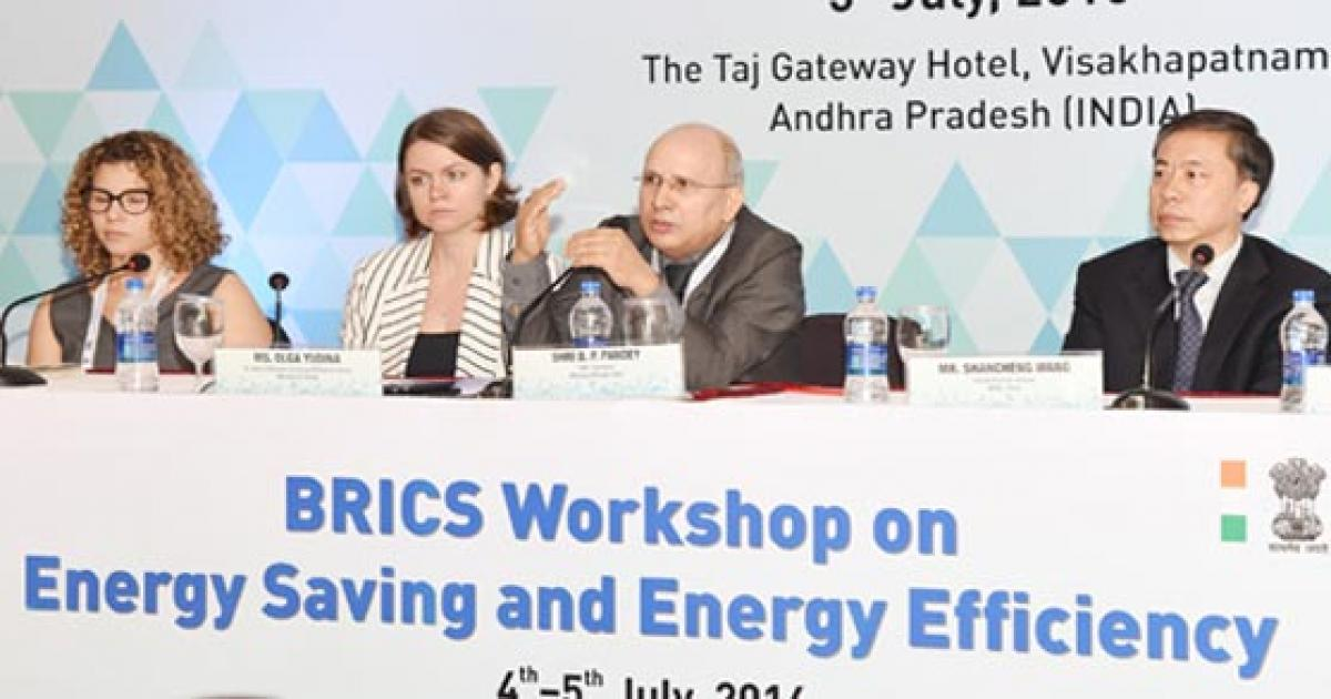 Role of energy efficiency in sustained growth stressed