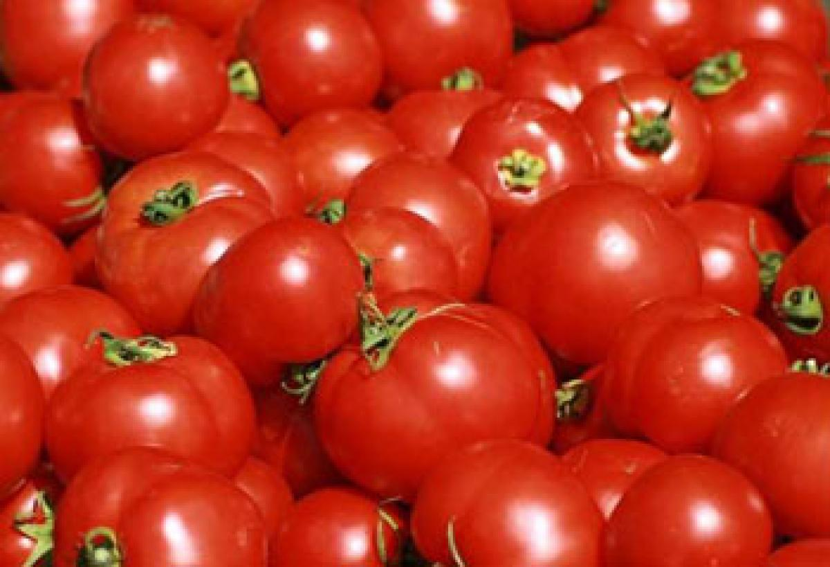 Dont refrigerate tomatoes for better aroma