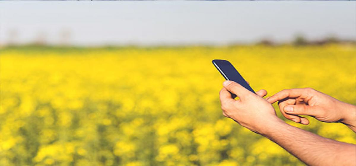Social media trending among farmers seeking solutions