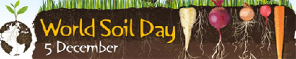 Soil-A Non-Renewable Resource for food security and sustainability