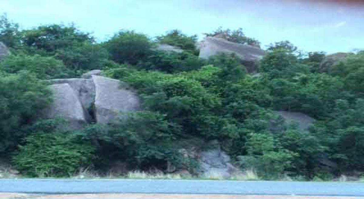 Hill Rocks: Hyderabad's own trekking spot