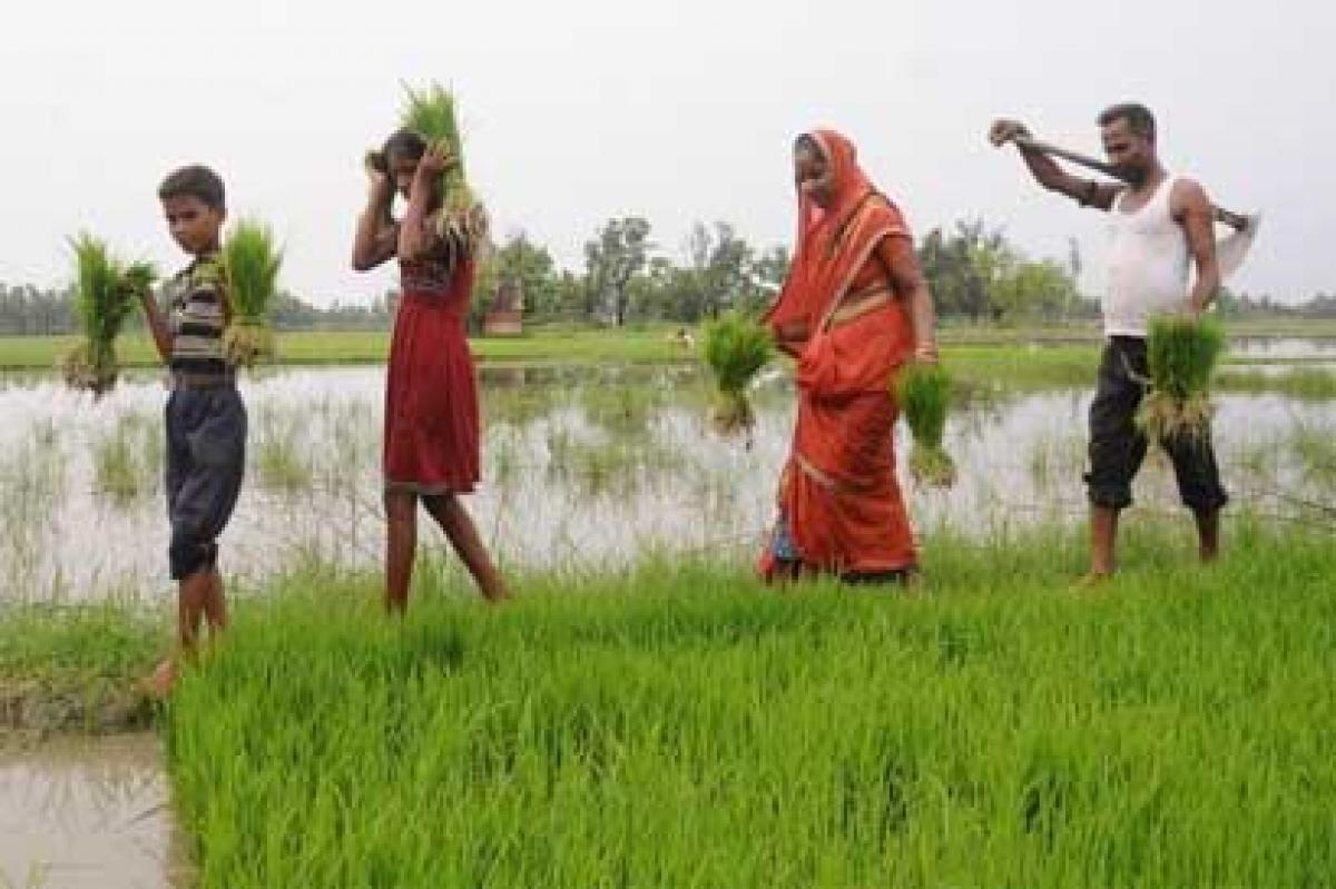 SMS Alert about Weather Conditions being Provided to Farmers