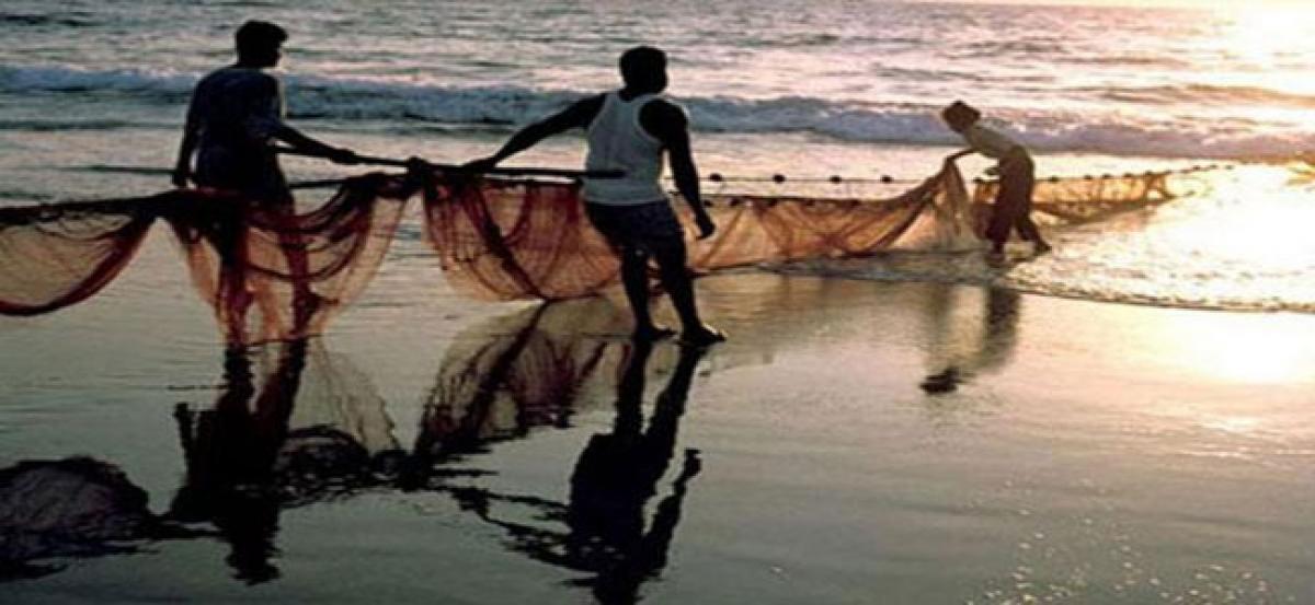 Fishermen back to sea after fishing ban period