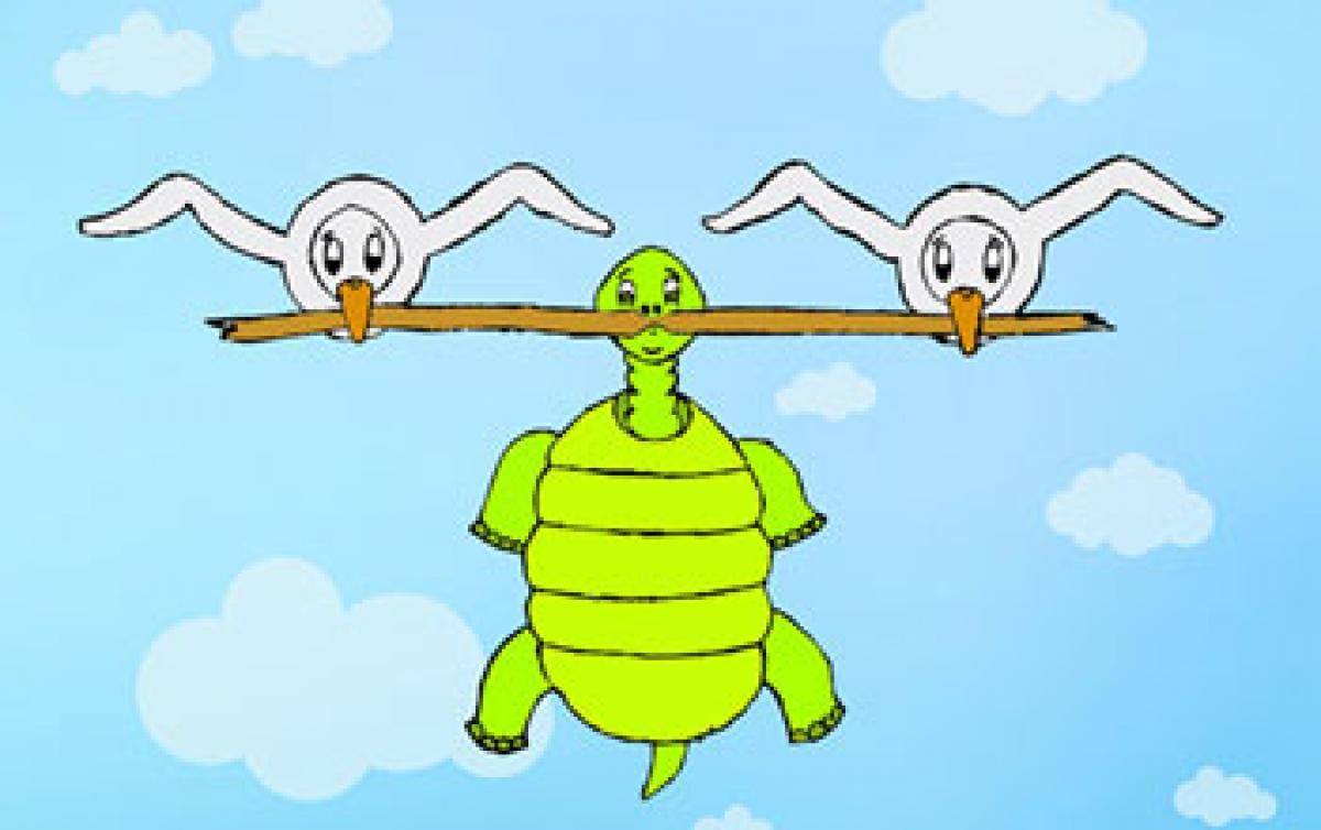 The Talkative Tortoise