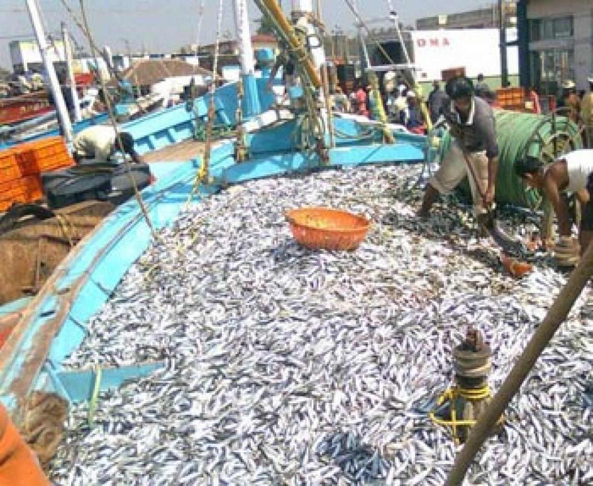 New national policy on marine fishery soon