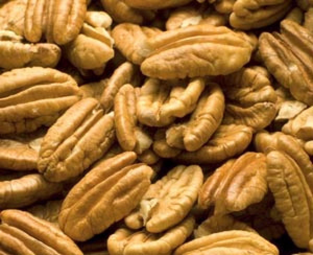 US pecan nuts launched in Hyd