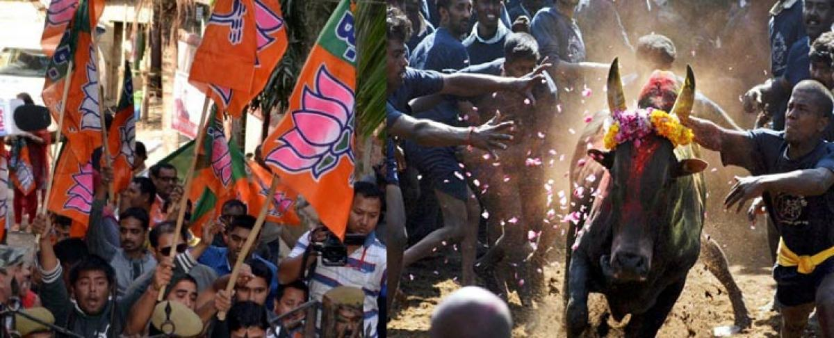 Indias opportunist politicians put tradition above law