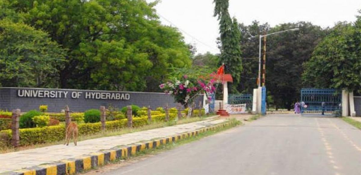 SHRC junks plea against UoH VC
