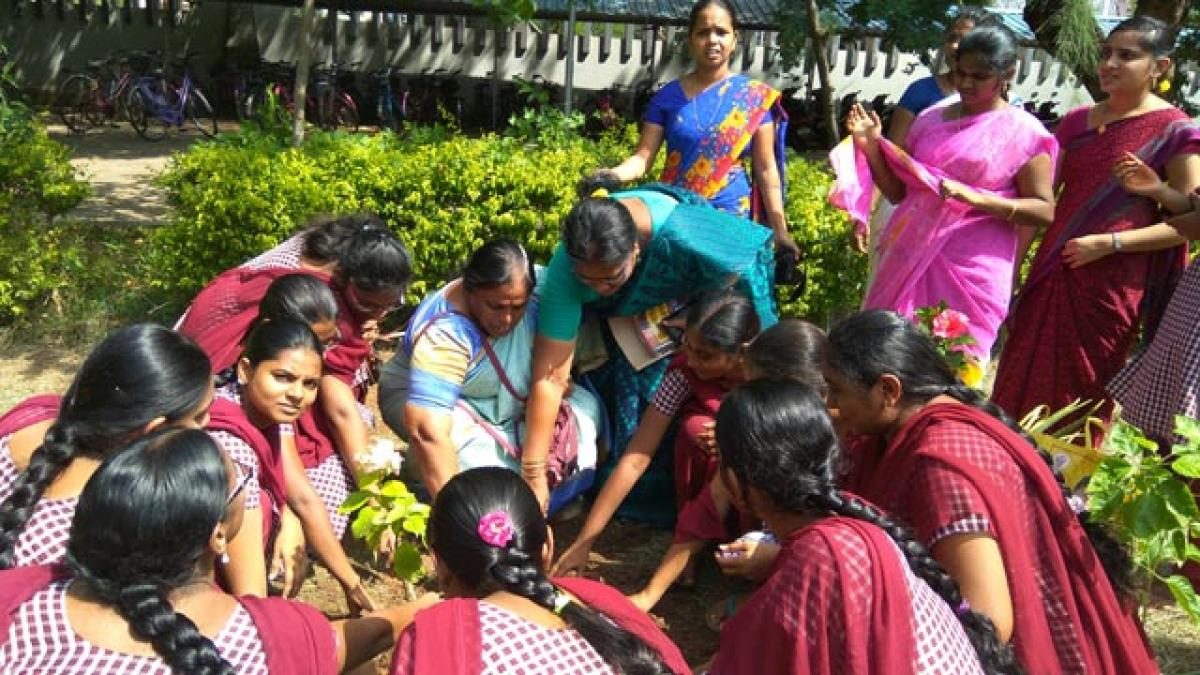 Maris Stella holds plantation drive